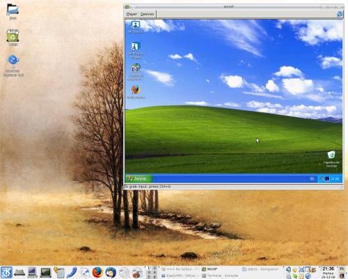 Windows virtualizado en linux